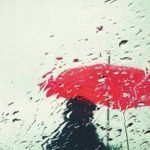 Detalle de la portada de la novela Patria, de Fernando Aramburu